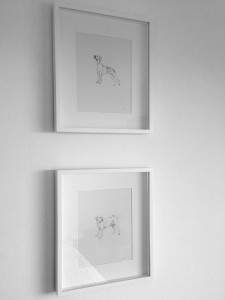 © Framed Hounds by Renée Nesbitt