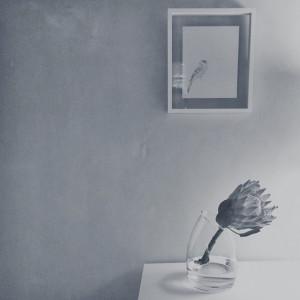 © Ren's Bird by Renée Nesbitt