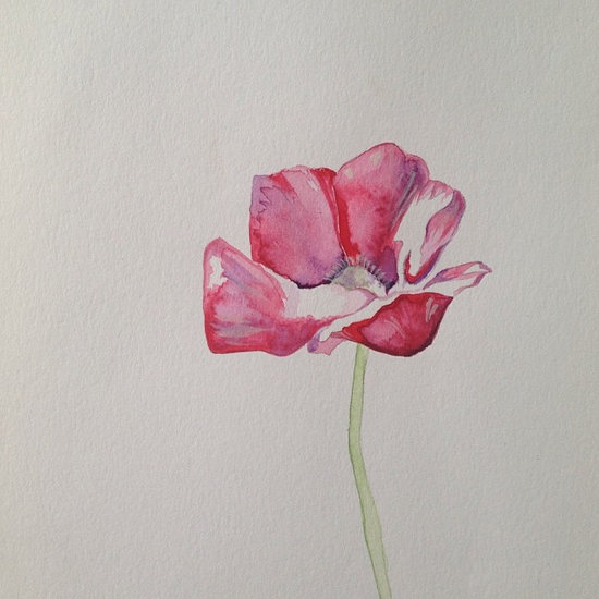 © Poppy by Renée Nesbitt